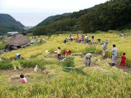 石部棚田収穫祭.jpg